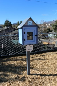 Ideas - Little Library at the park