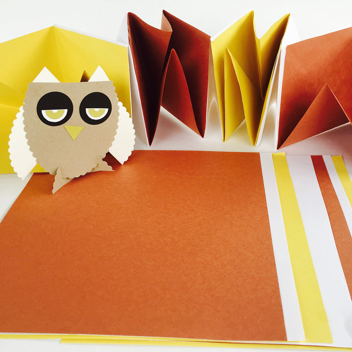 Origami accordion Book